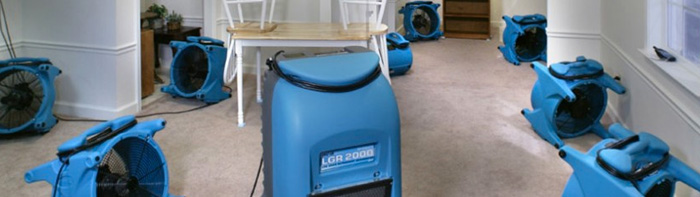 Dehumidifying and Drying Services